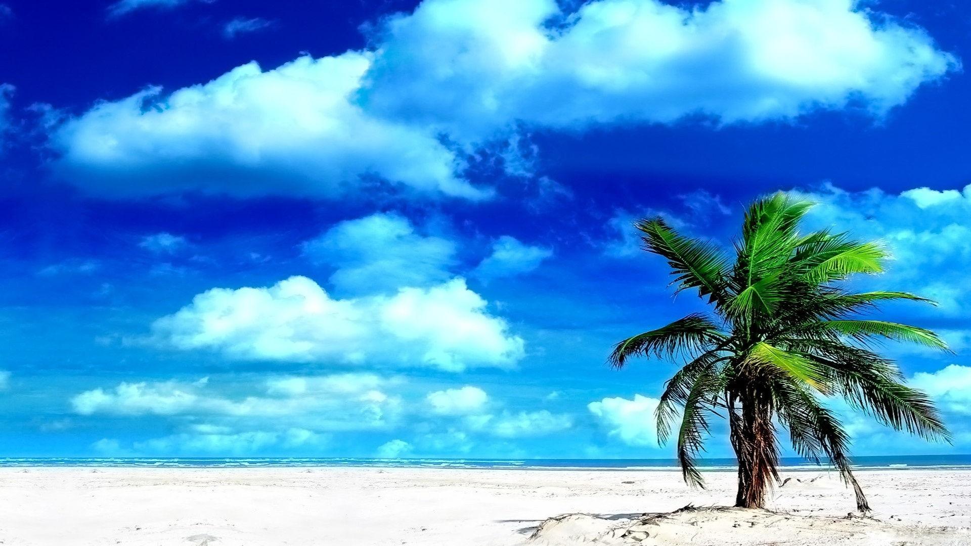sands online casino google ocean kostenlos downloaden