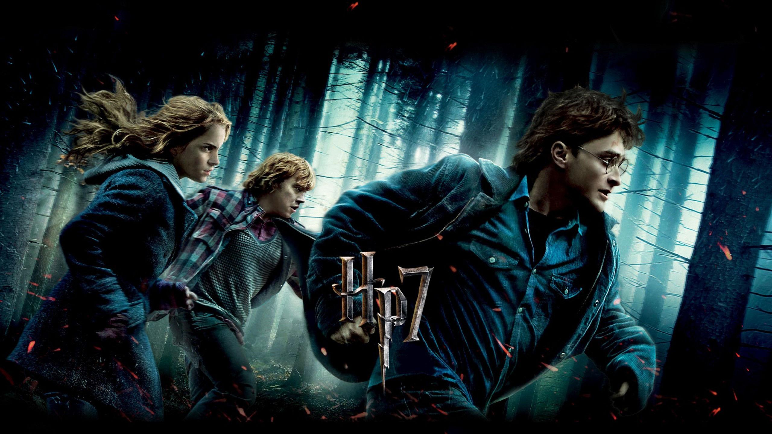 Fonds Décran Harry Potter Et Les Reliques De La Mort 1ère Partie