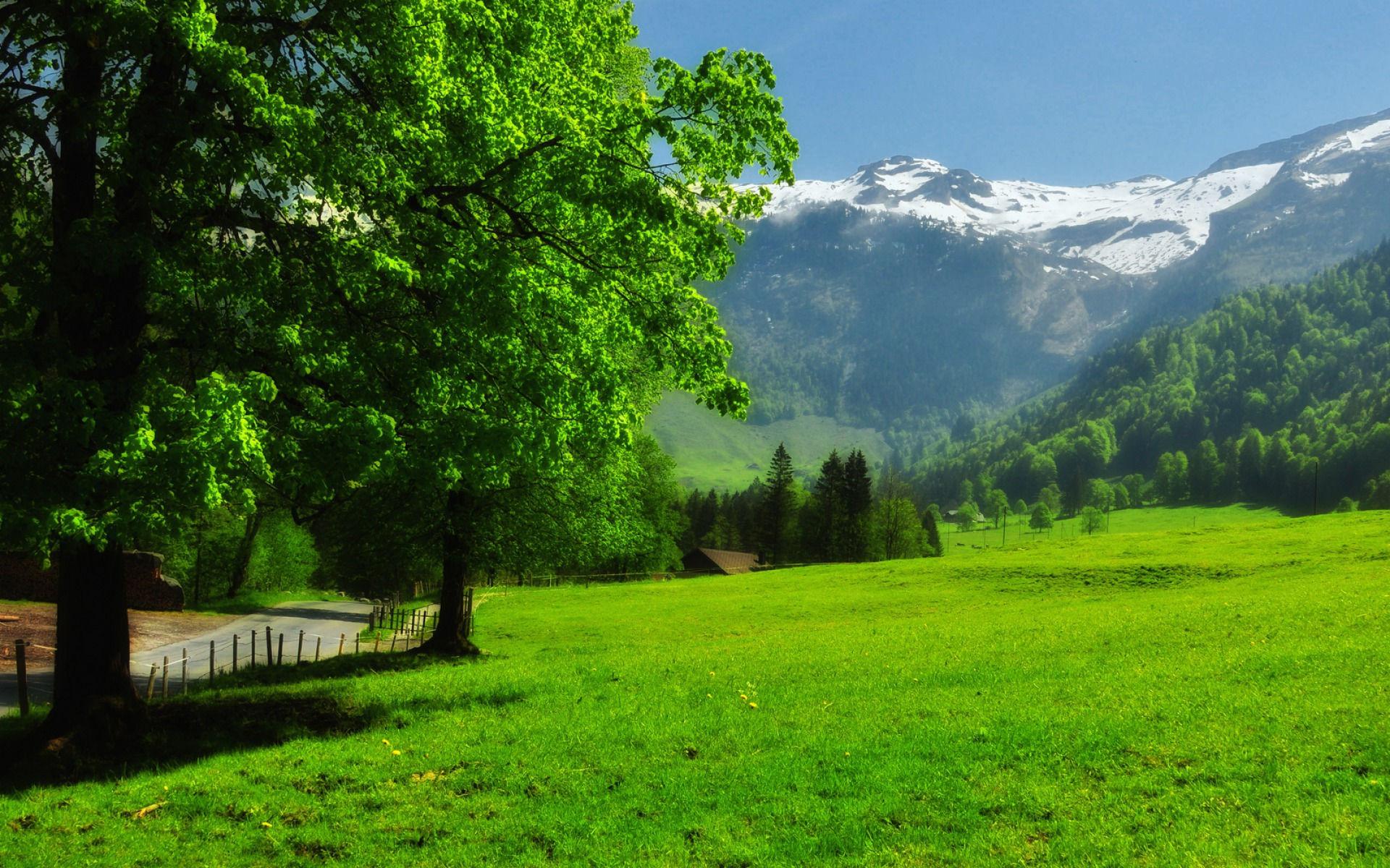 Fonds d 39 cran paysage suisse maximumwallhd for Paysage