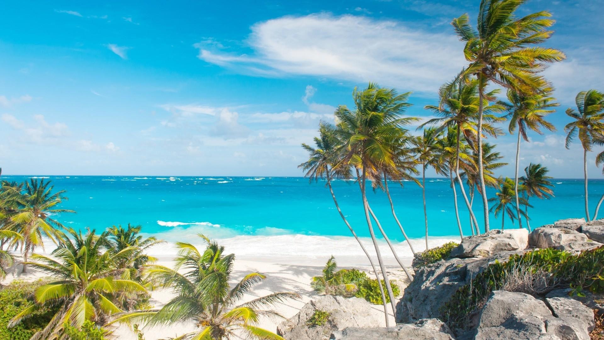 Fonds D Ecran Barbade Maximumwallhd
