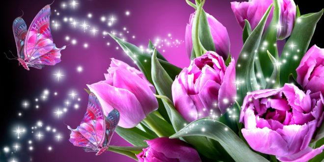 fond-ecran-wallpaper-image-abstrait-fleur-13-660x330