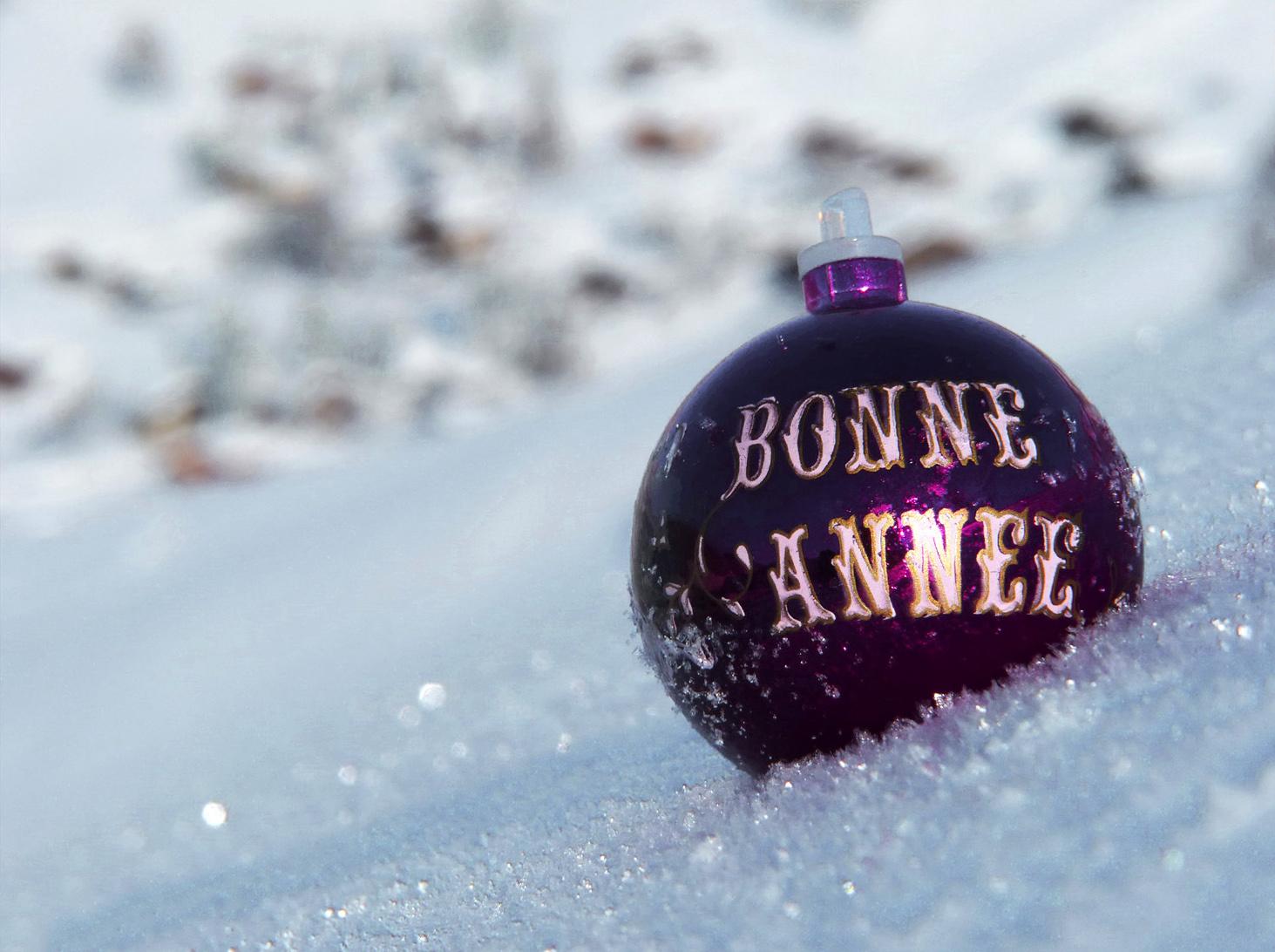 Поздравления на новый год по французски