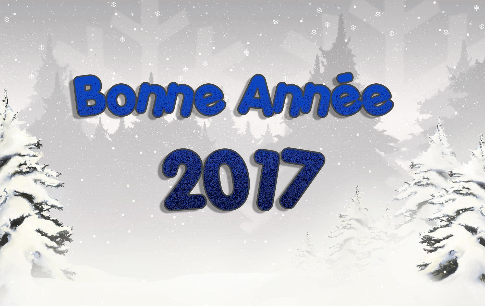 """Résultat de recherche d'images pour """"bonne année 2017"""""""
