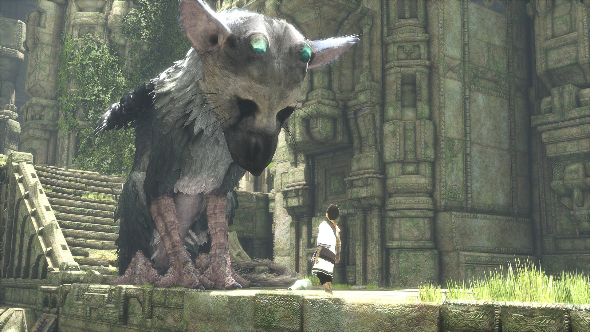 the last guardian hd - photo #6